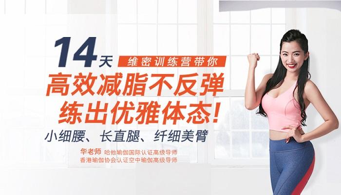 维密极简瘦身营:14天高效减脂不反弹,练出优雅体态